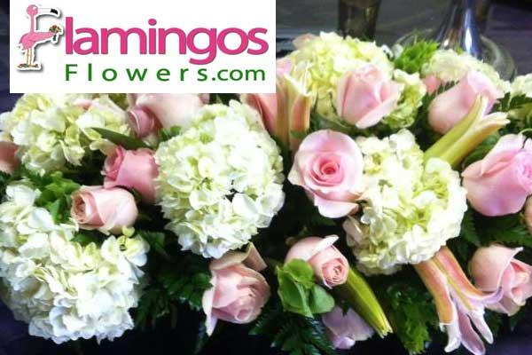 Flamingos Flowers Los Angeles