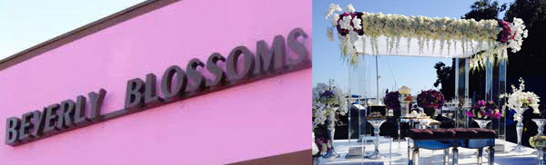 Beverly Blossoms Los Angeles