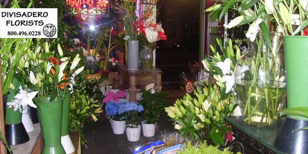 Divisadero Florist San Francisco