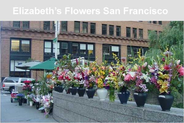 Elizabeths Flowers San Francisco