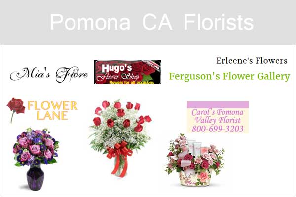 Pomona CA Florists