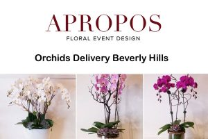 Orchids Delivery Beverly Hills