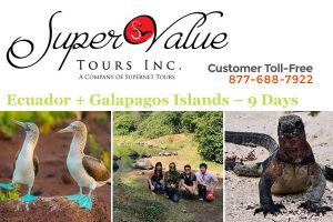 Ecuador + Galapagos Tours from Los Angeles