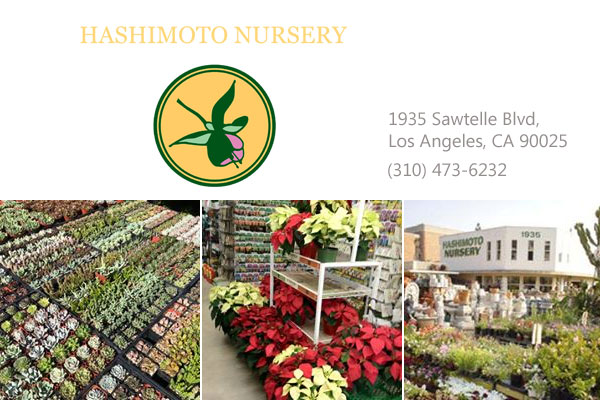 Hashimoto Nursery Los Angeles