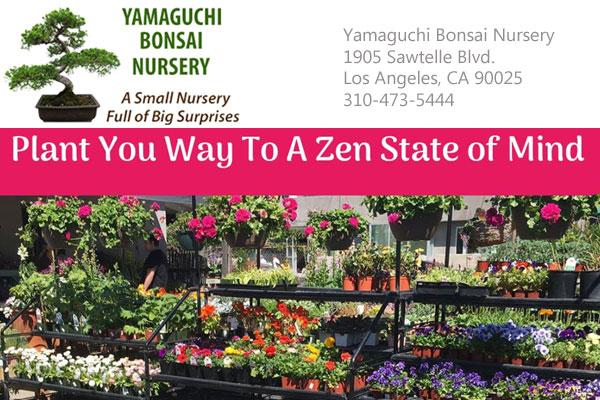 Yamaguchi Bonsai Nursery Los Angeles