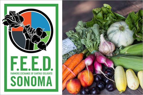 FEED Sonoma CSA