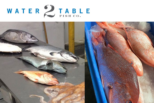 Water2Table Fish Co