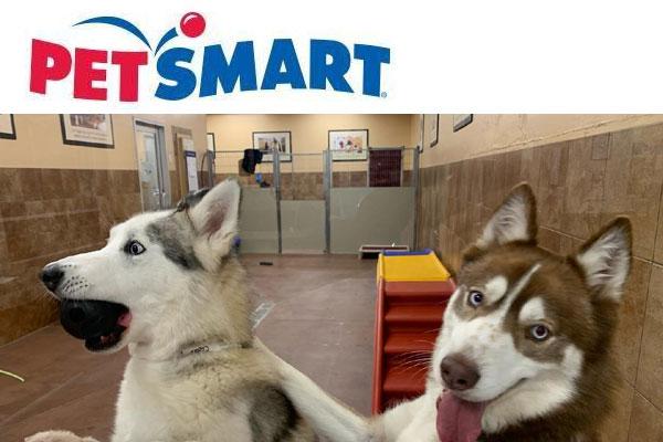 PetsMart Encinitas
