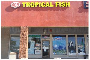405 Tropical Fish Westminster CA